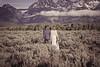20190623WY_Lindsey Bennett_& Derek_McIlvaine_Wedding_&_Bride-Groom_Portrait_Session (159)-2