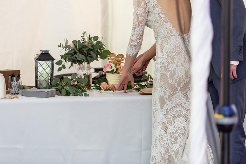20190622WY_Lindsey Bennett_& Derek_McIlvaine_Wedding (4218)