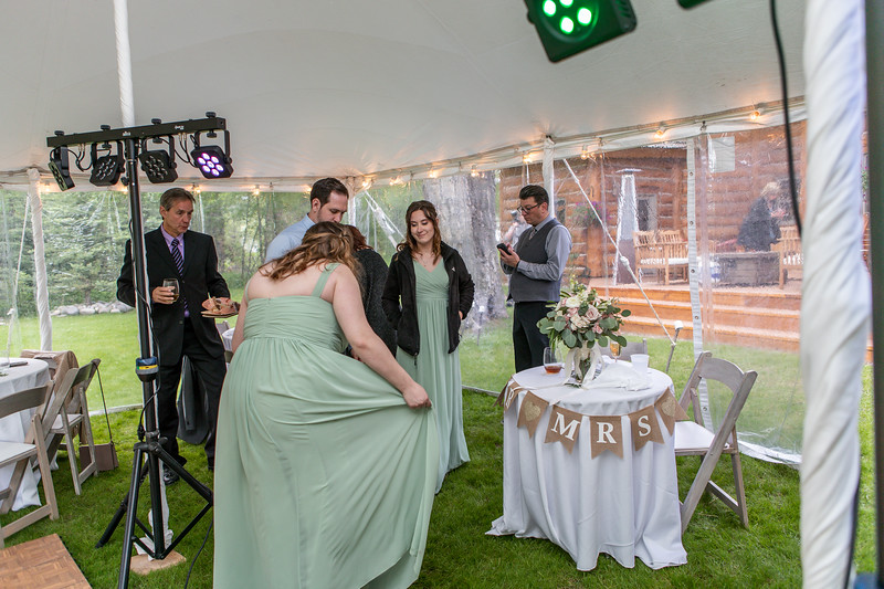 20190622WY_Lindsey Bennett_& Derek_McIlvaine_Wedding (2558)