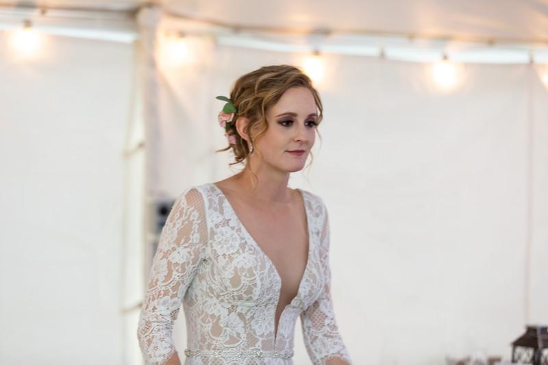 20190622WY_Lindsey Bennett_& Derek_McIlvaine_Wedding (4438)