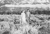20190623WY_Lindsey Bennett_& Derek_McIlvaine_Wedding_&_Bride-Groom_Portrait_Session (169)-3