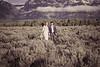 20190623WY_Lindsey Bennett_& Derek_McIlvaine_Wedding_&_Bride-Groom_Portrait_Session (162)-2