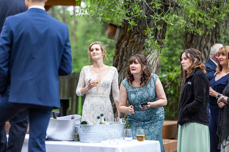 20190622WY_Lindsey Bennett_& Derek_McIlvaine_Wedding (4706)
