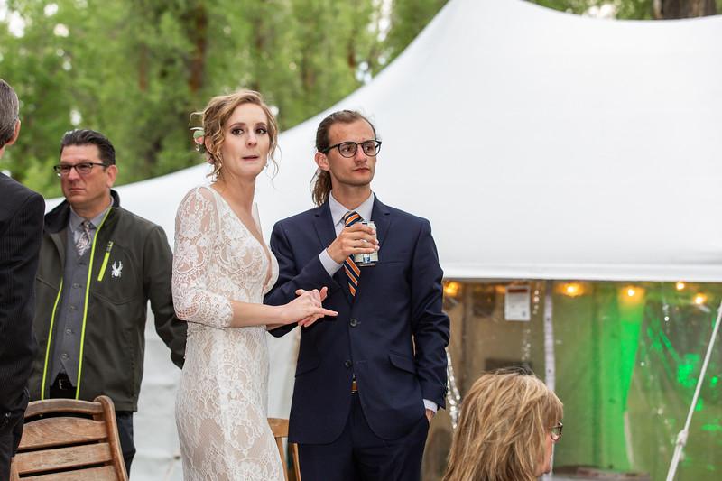 20190622WY_Lindsey Bennett_& Derek_McIlvaine_Wedding (5490)