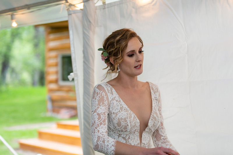 20190622WY_Lindsey Bennett_& Derek_McIlvaine_Wedding (4121)