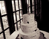 20181006-Benjamin_Peters_&_Evelyn_Calvillo_Wedding-Log_Haven_Utah (3592)-2