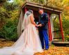 20181006-Benjamin_Peters_&_Evelyn_Calvillo_Wedding-Log_Haven_Utah (2127)Compressor Deep