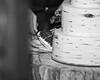 20181006-Benjamin_Peters_&_Evelyn_Calvillo_Wedding-Log_Haven_Utah (3998)-2