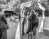 20181006-Benjamin_Peters_&_Evelyn_Calvillo_Wedding-Log_Haven_Utah (1009)LS2-2