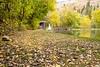 20181006-Benjamin_Peters_&_Evelyn_Calvillo_Wedding-Log_Haven_Utah (2239)LS2