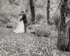 20181006-Benjamin_Peters_&_Evelyn_Calvillo_Wedding-Log_Haven_Utah (2404)Moose1-2