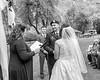 20181006-Benjamin_Peters_&_Evelyn_Calvillo_Wedding-Log_Haven_Utah (1231)LS2-2