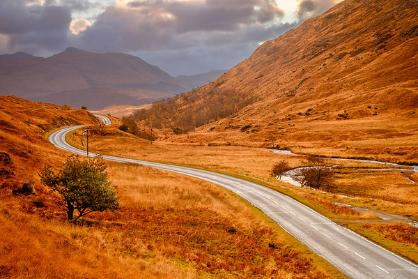 Golden Glen - Road to Ardnamurchan, Glen Tarbert, Ardgour