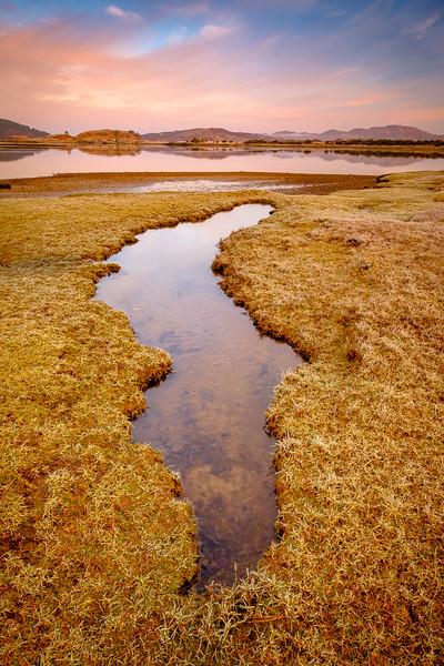 Morning on the Marsh - Kentra Bay, Arivegaig, Ardnamurchan