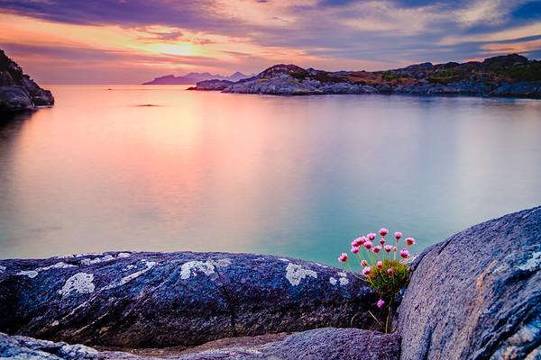 Sunset Pinks - Sailean Dubh, Ardtoe, Ardnamurchan