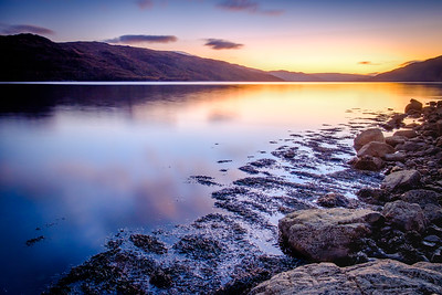 Lilac & Gold - Morvern from Loch Sunart Shore, Rockpool House, Resipole, Sunart