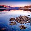 Floating Frost - Loch Sunart, Strontian, Sunart