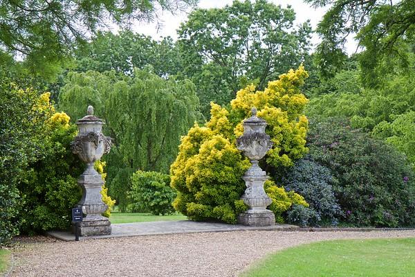 West Lodge Park Arboretum - 6543