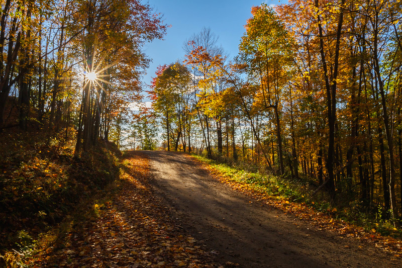 Goldring Road Sunstar 8660