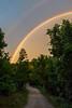 Rainbow Road 6287F