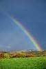 Preston Rainbow V1