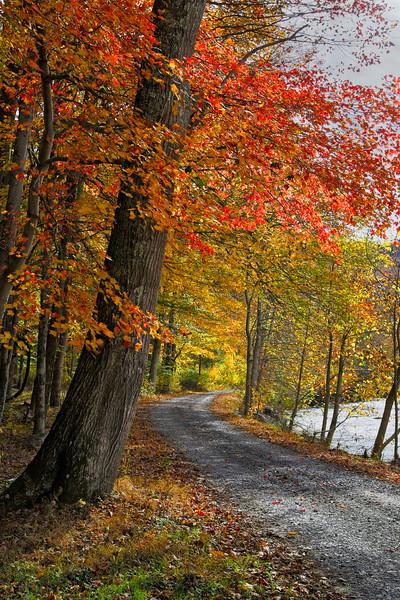 River Road Dry Fork 3432L