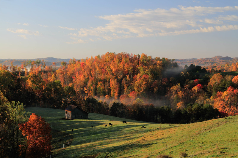 Pleasant Ridge Morning H2
