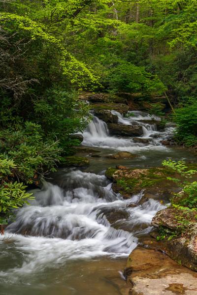 Keeneys Creek 5744