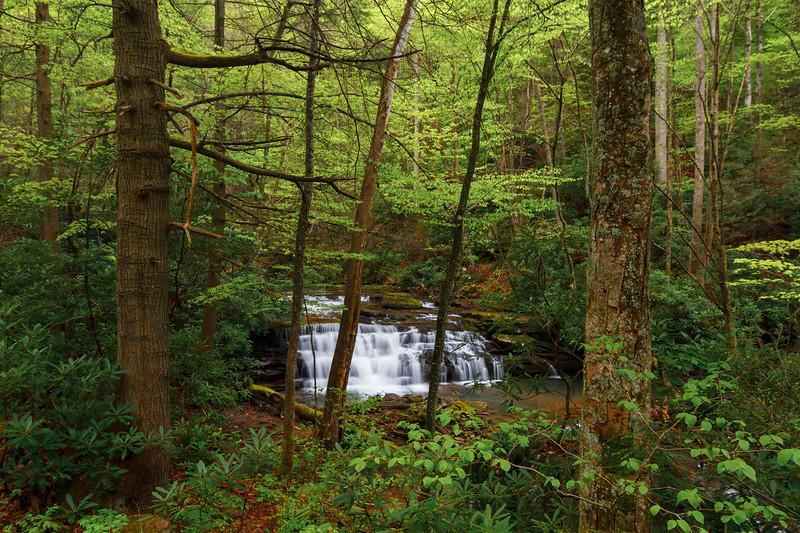 Keeney's Creek 001