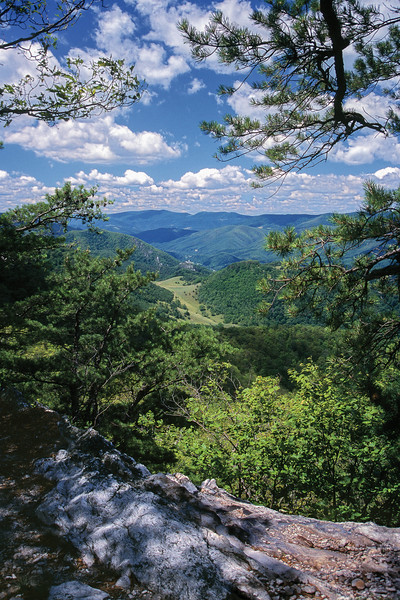 North Fork Mountain 44