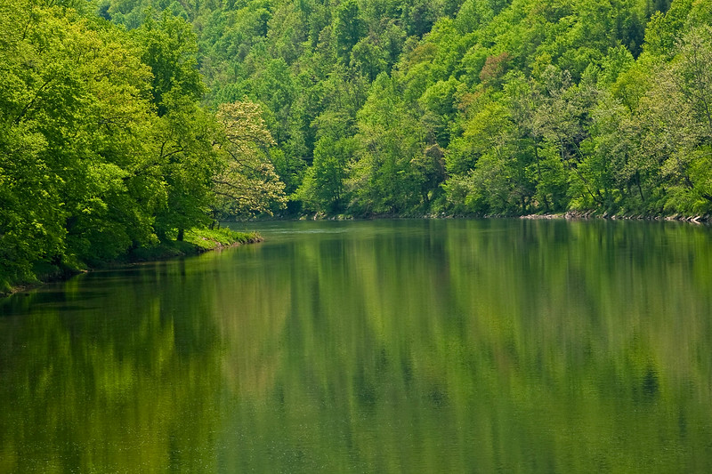 Cheat River Reflection 1158