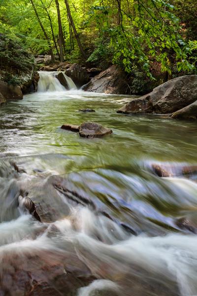 Deckers Creek Spring 68