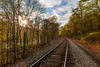 Walking on the Railroad 3988