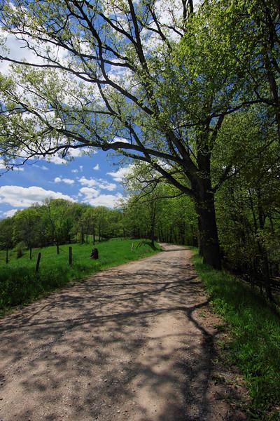 Lynn Camp Road V03