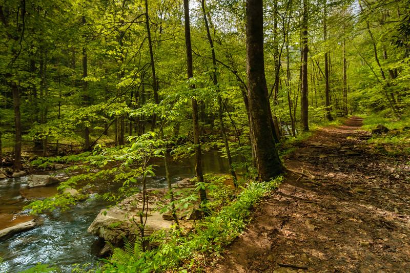 Glade Creek Trail 005