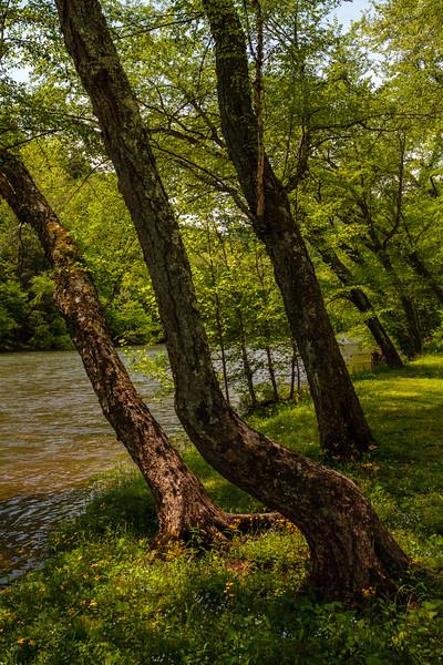 Elk River 0007