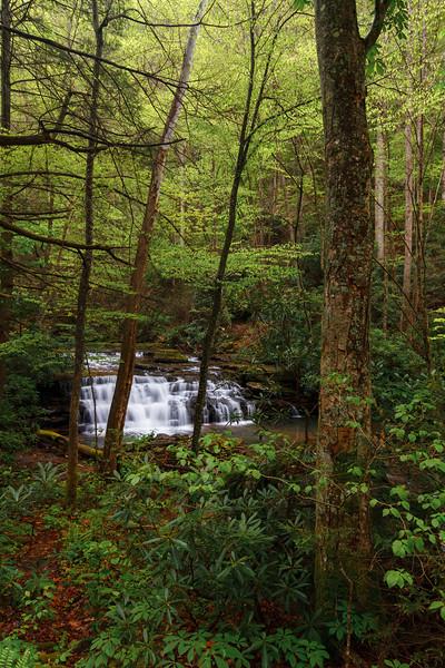 Keeney's Creek 06