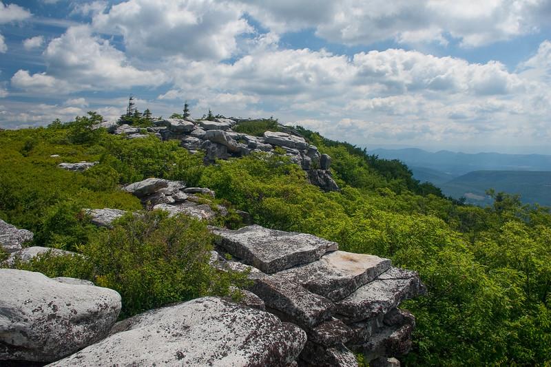 Bear Rocks June H1