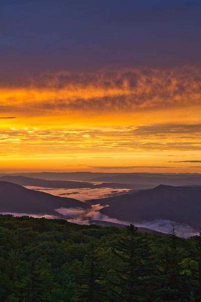Dolly Sods Sunrise 1463L