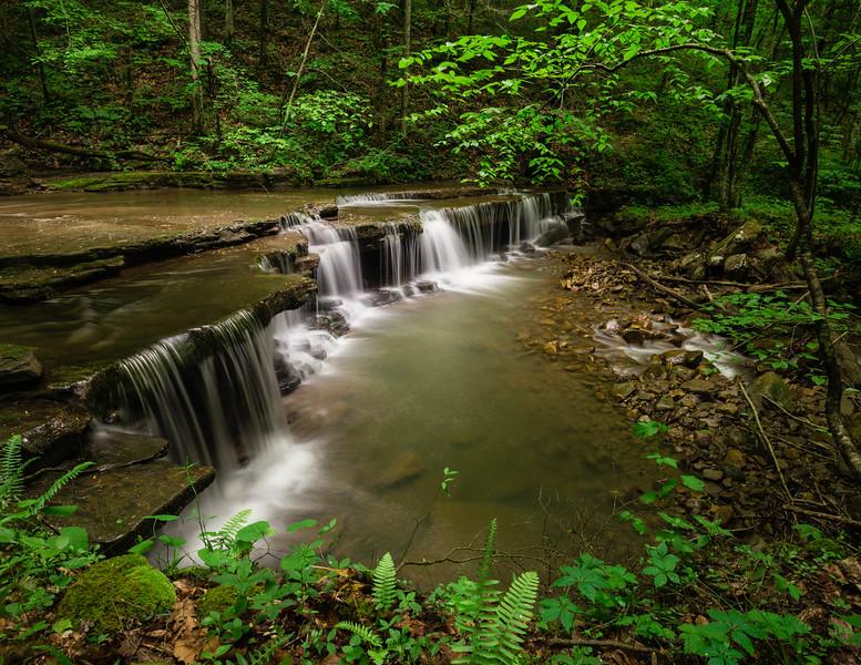 Fall Branch Falls 8485