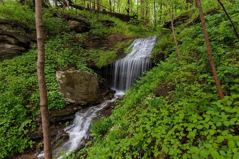 Blacksville Waterfall 4366
