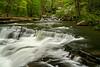 Dunloup Creek 194