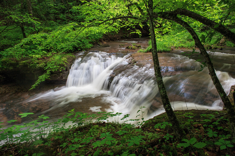 Fall Branch Falls 0803
