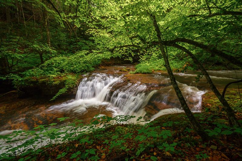 Fall Branch Falls 0813