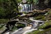 Elakala Falls 7658