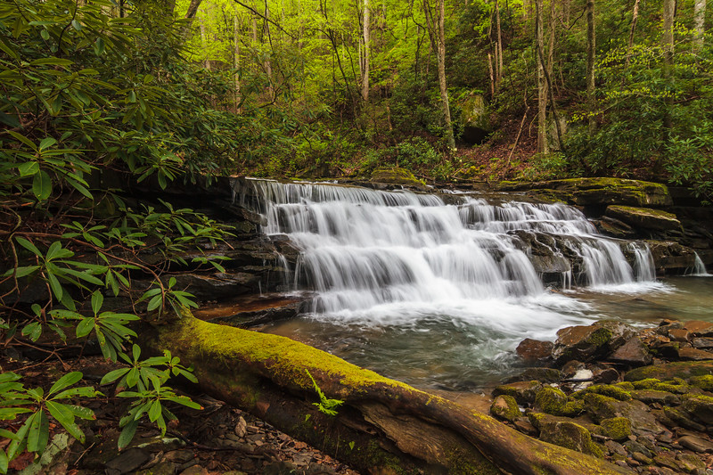 Keeney's Creek Waterfall 013