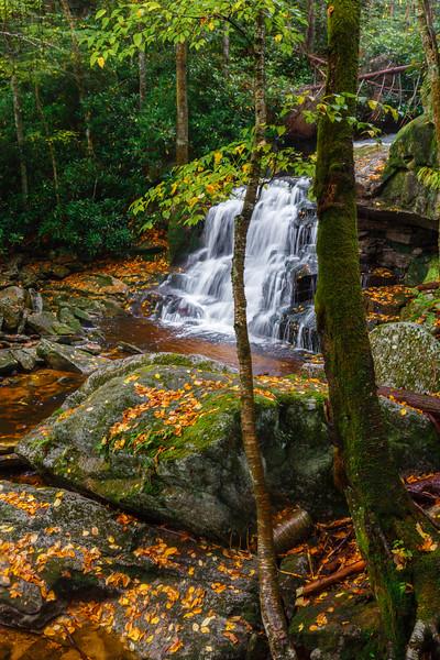 Elakala Falls II