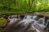 Fall Branch Falls 8462