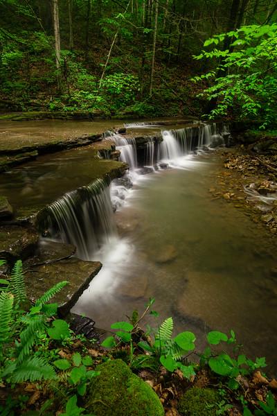 Fall Branch Falls 8482