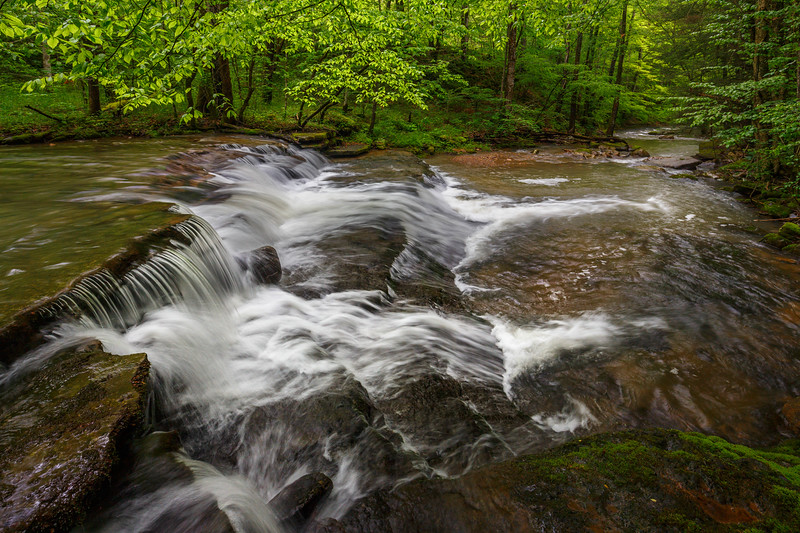 Fall Branch Falls 5826
